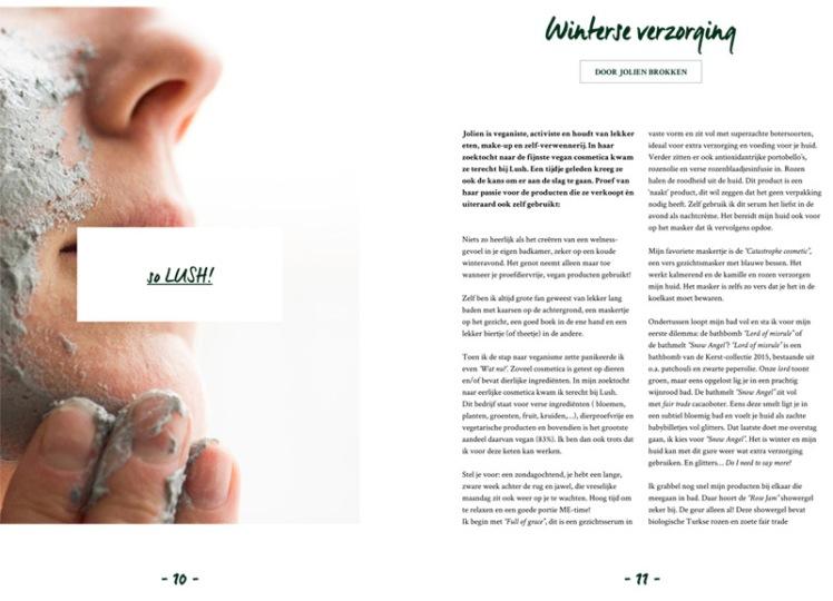 dgk6-website4